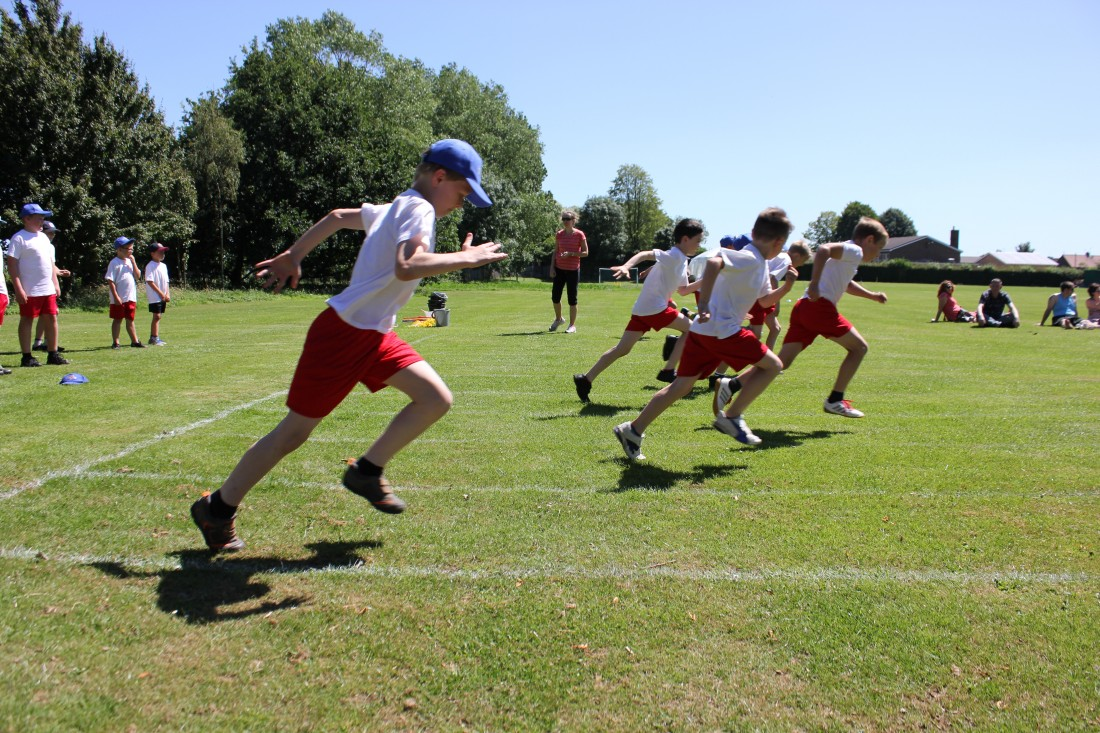 how to organise a sports day in school